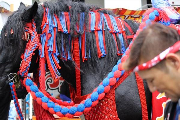 2016年ボシタ祭り肥後飾馬愛好会本祭写真画像
