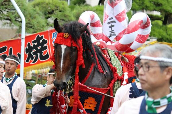 2016年ボシタ祭り青年江原会本祭写真画像
