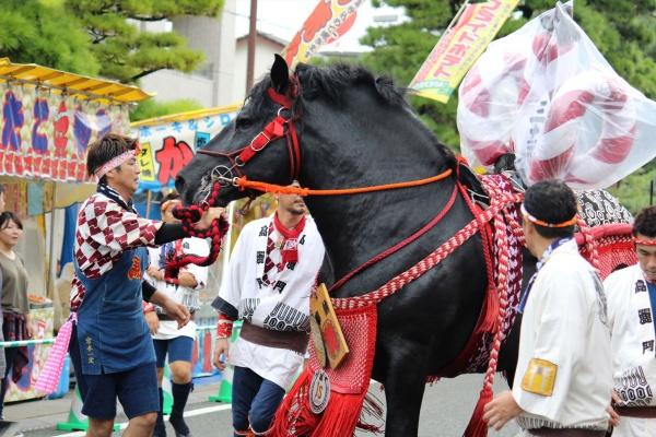 2016年ボシタ祭り高麗門本祭写真画像