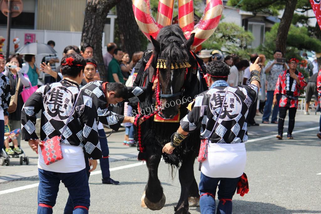 2016年ボシタ祭り熊本隼大飾卸写真画像