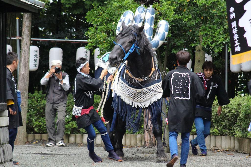 2017年河尻神宮秋季例大祭(川尻ボシタ)
